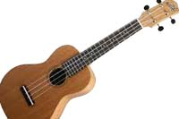 Get on the Ukulele Bandwagon